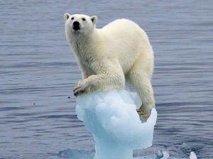 全球变暖入门